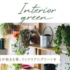 Interior green 新生活が始まる春、インテリアにグリーンを